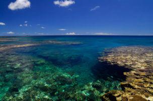 「幻の島」八重干瀬のサンゴ礁